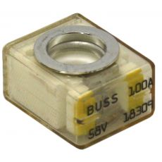 MRBF-100 Retail Terminal Replacement Fuse