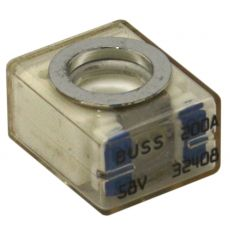 MRBF-200 Retail Terminal Replacement Fuse
